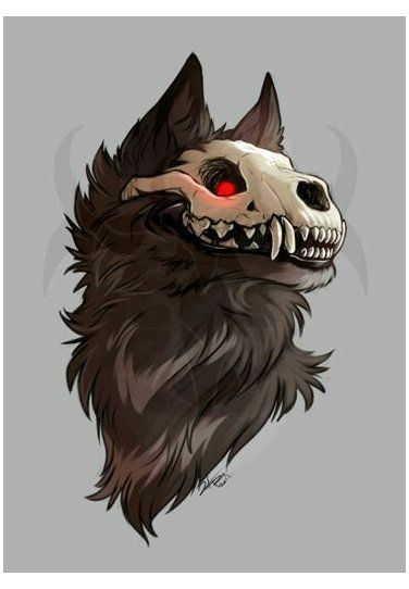 Photo of skull wolf drawing