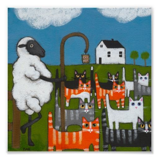 Sheep Herding Cats Poster Zazzle Com With Images Cat Posters