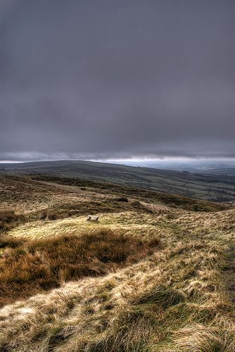 A lonely place by Raven Photography by Jenna Goodwin, via Flickr