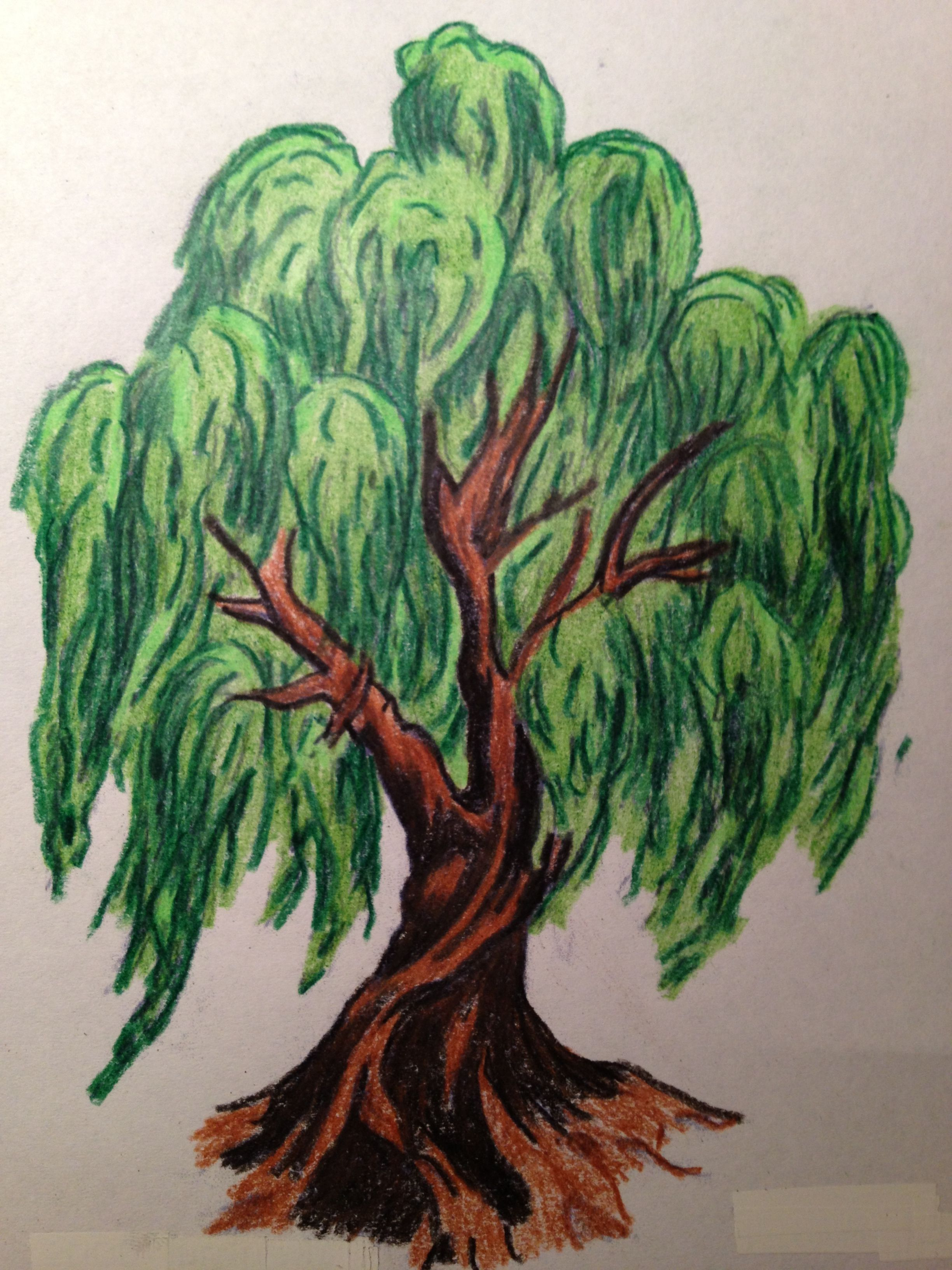 willow tree tattoo   Weeping Willow with virtue roots by ~EverIris ...