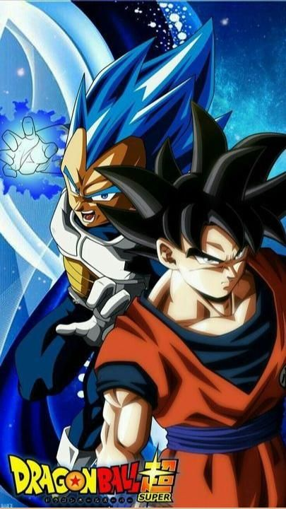 The Duo - Goku & Vegeta