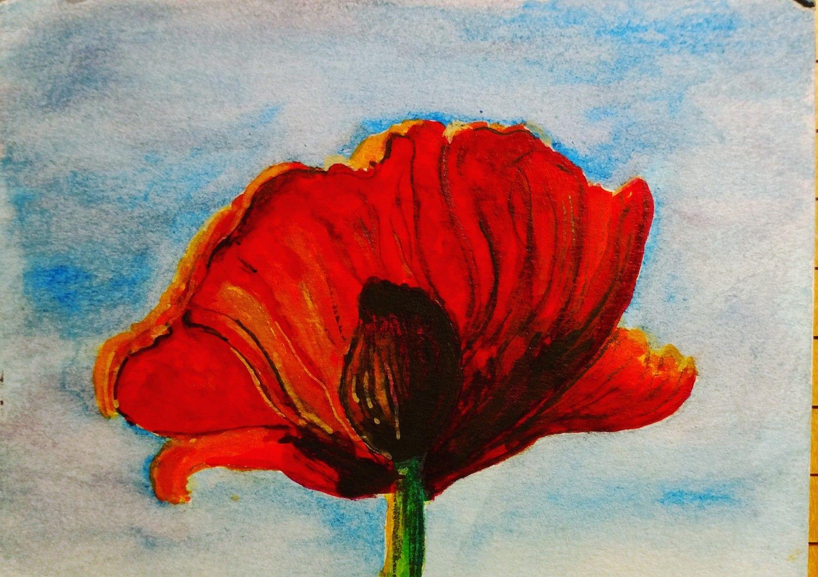 Poppy Watercolor On Cardstock Painting Watercolor Paintings Art