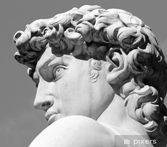 head of David sculpture by Michelangelo, Florence, Tuscany Wall Mural • Pixers® - We live to change #greekstatue