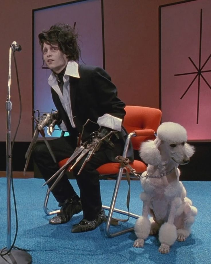 Edward Scissorhands Amp Poodle The Poodle Patch With Images