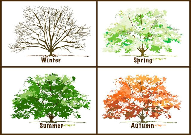 Clip Art Seasons Clipart beautiful free clip art for the 4 seasons and four seasons
