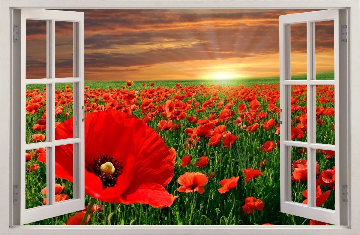 details about 3d effect window wall stickers flowers on wall stickers design id=87077