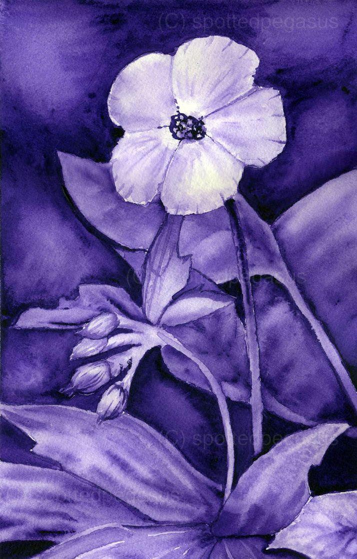 Monochromatic Flower By Spottedpegasus Monochromatic Art
