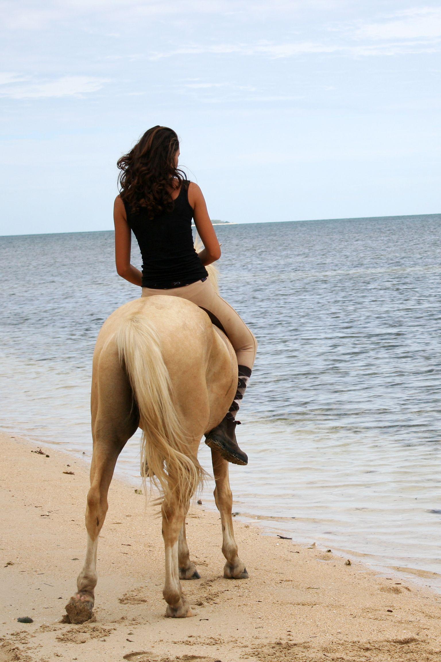Partez pour une randonnée à cheval en Nouvelle-Calédonie #chevaldaventure #oceanie