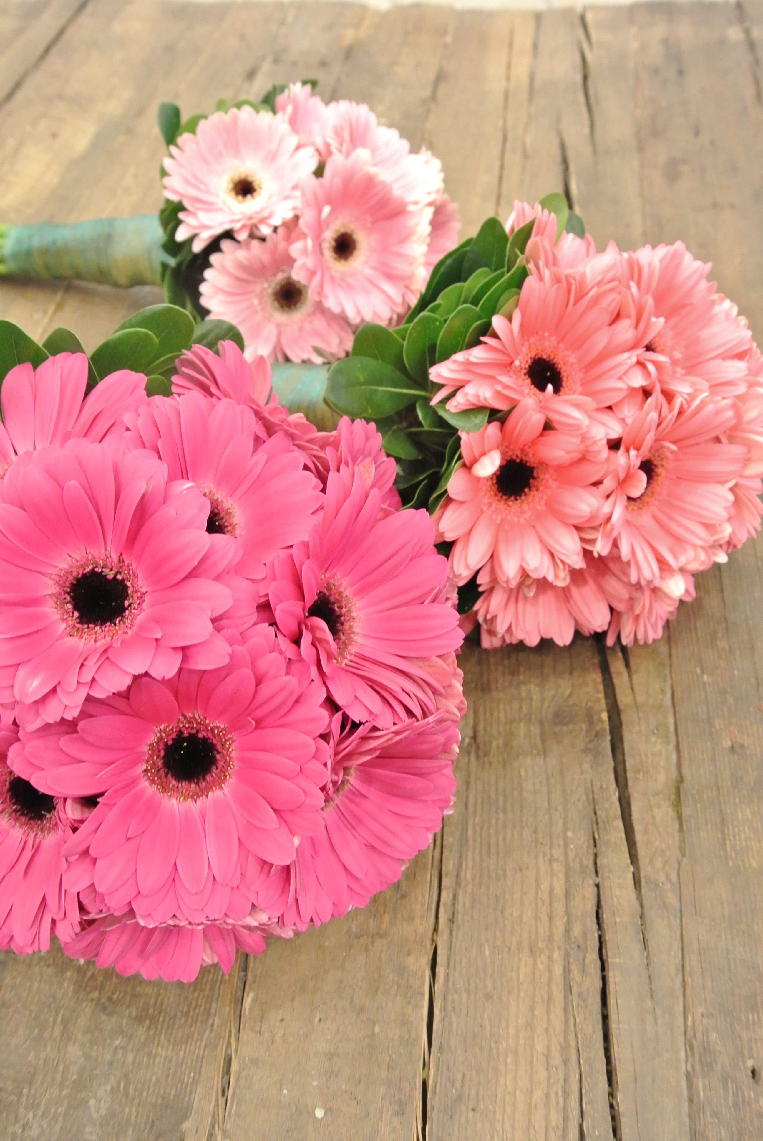 Cute gerbera bouquets.   Wedding   Pinterest   Ramos, Gerberas y ...