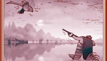 Cazador de patos