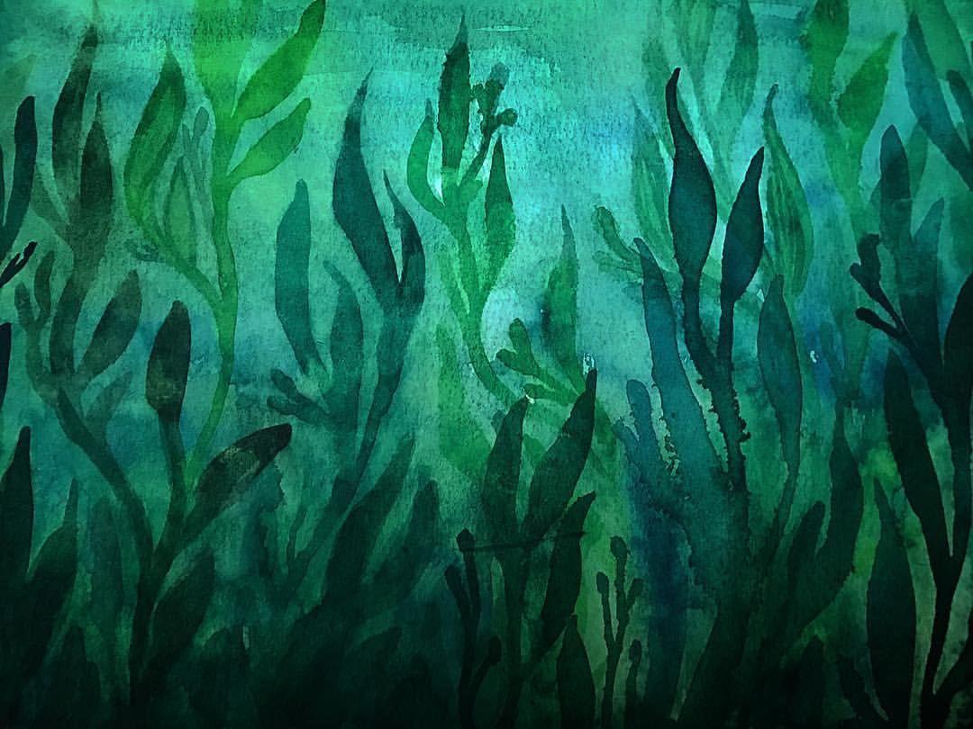 underwater painting seaweed - HD1080×810