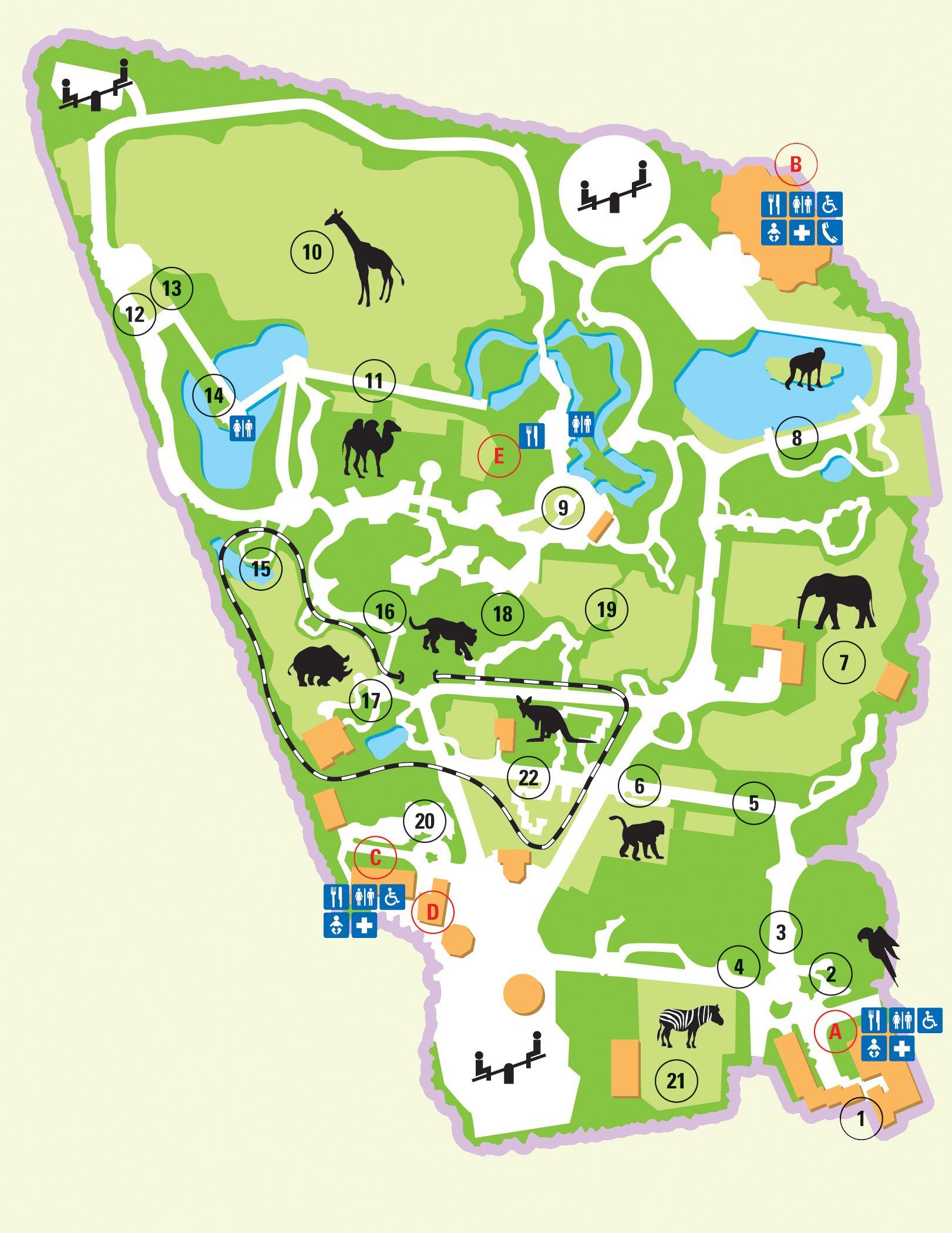 afbeeldingsresultaat voor plattegrond dierentuin kaarten