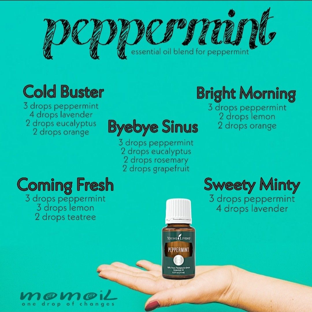 14++ Peppermint essential oil blends ideas
