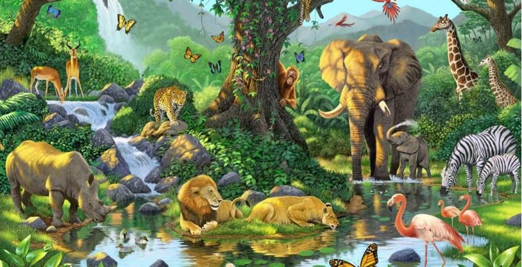 Murals African Jungle Murals Wallpaper Murals Art