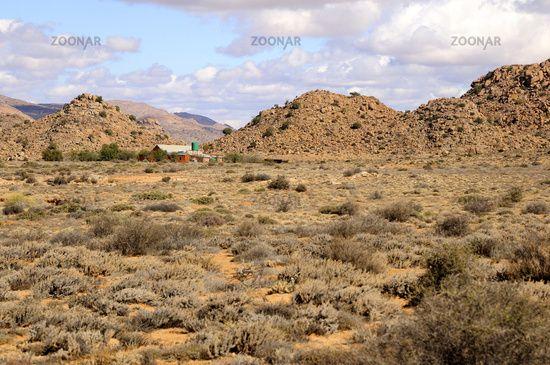 Deserts In Africa Shrubland Semi Desert Of Goegap