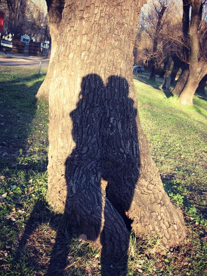 La sombra del amor.