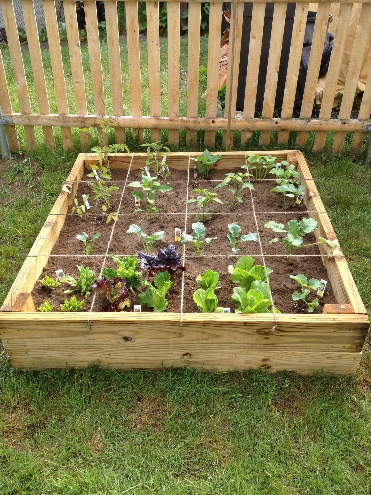 garden like a pro with these simple tips gardening tips