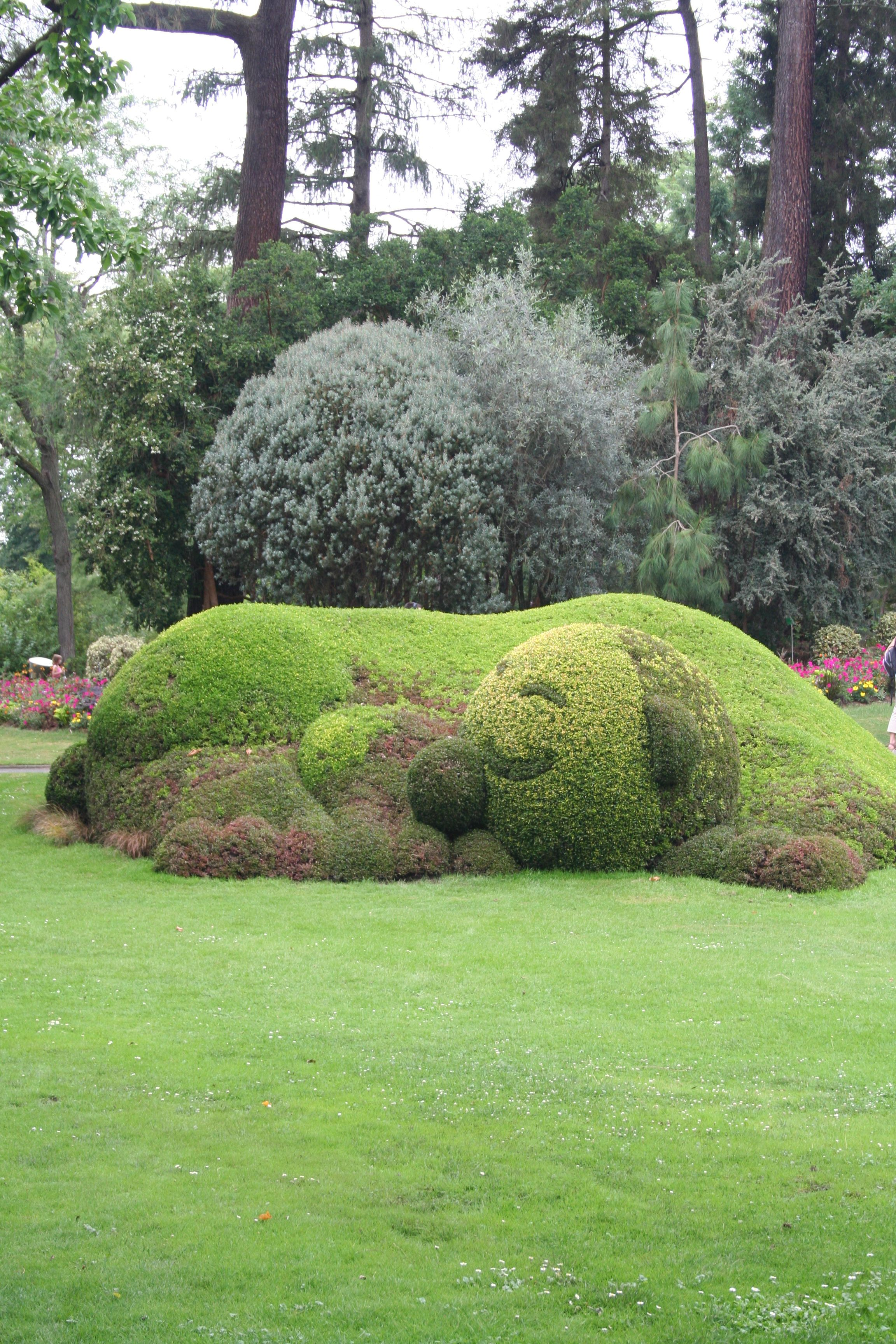 Un chien dans le jardin des plantes de Nantes