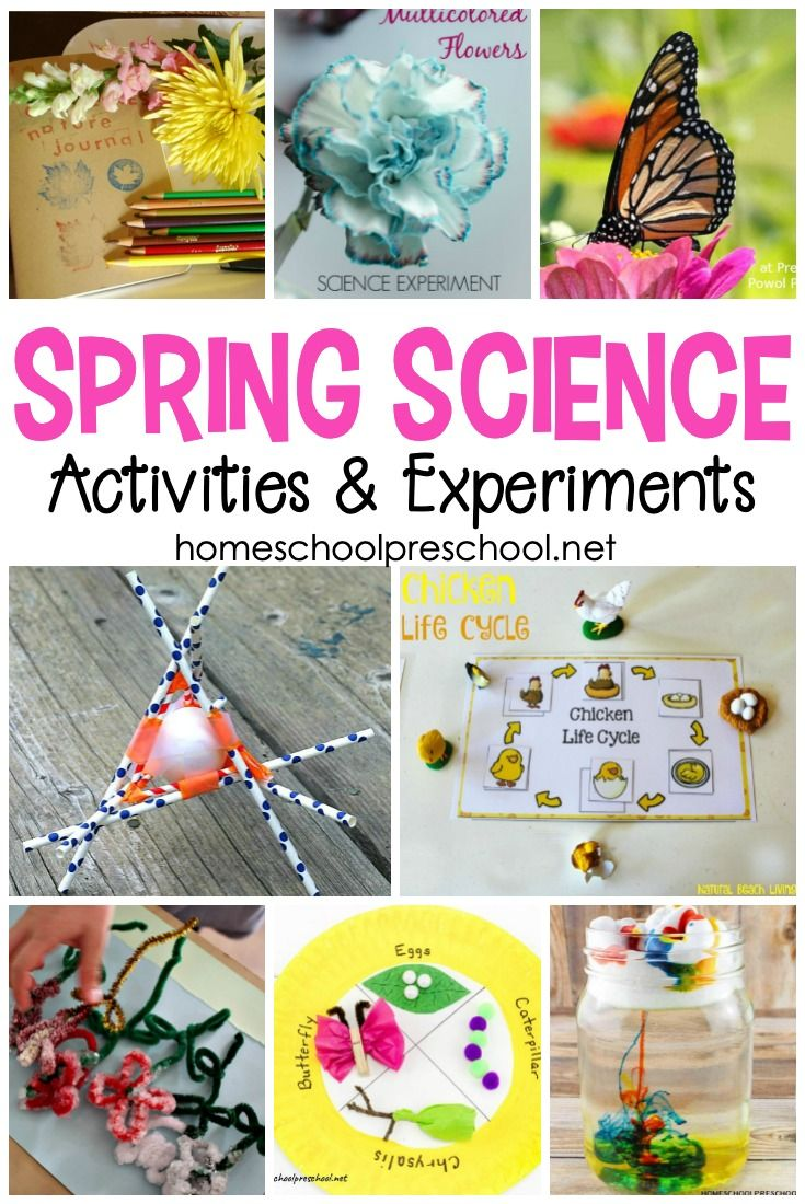 Engaging Spring Science Experiments for Preschoolers