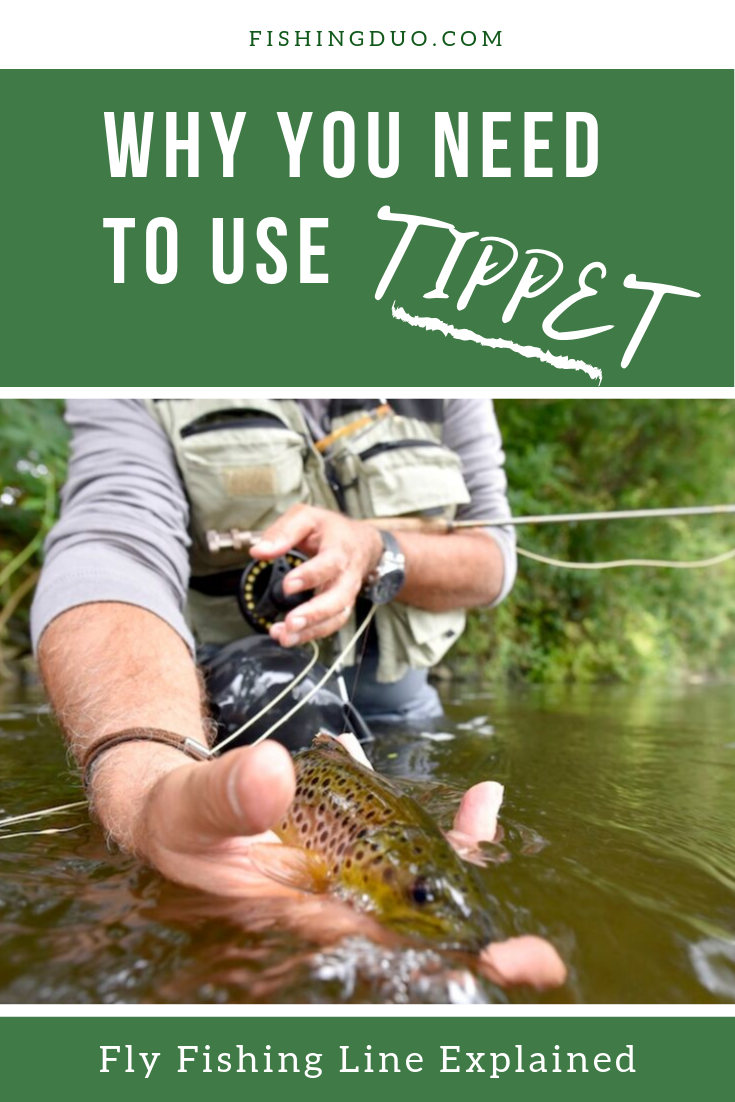Fly Fishing Line Explained Fly Fishing Line Fly Fishing Fish