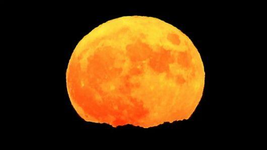 En las diferentes regiones del planeta se observó la Luna más grande y brillante que pueda verse en casi 70 años. - Noticias