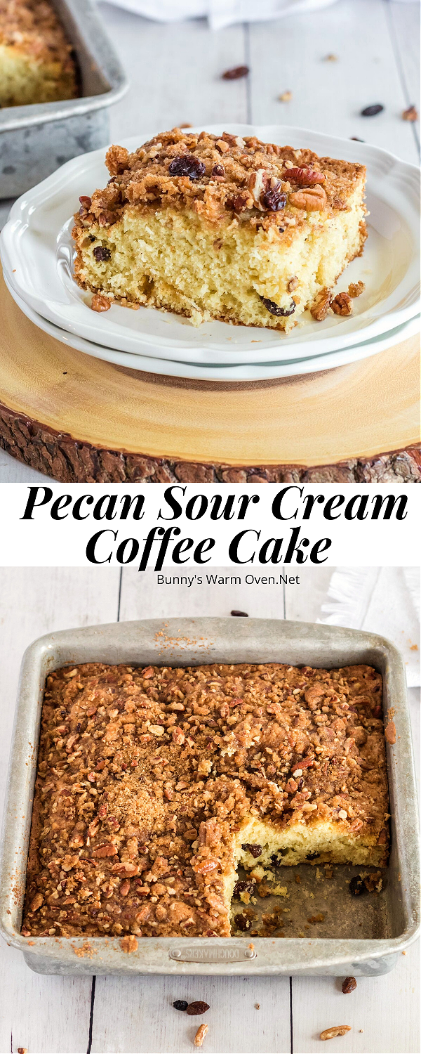 Pecan Sour Cream Coffee Cake In 2020 Sour Cream Coffee Cake Coffee Cake Easy Autumn Recipes