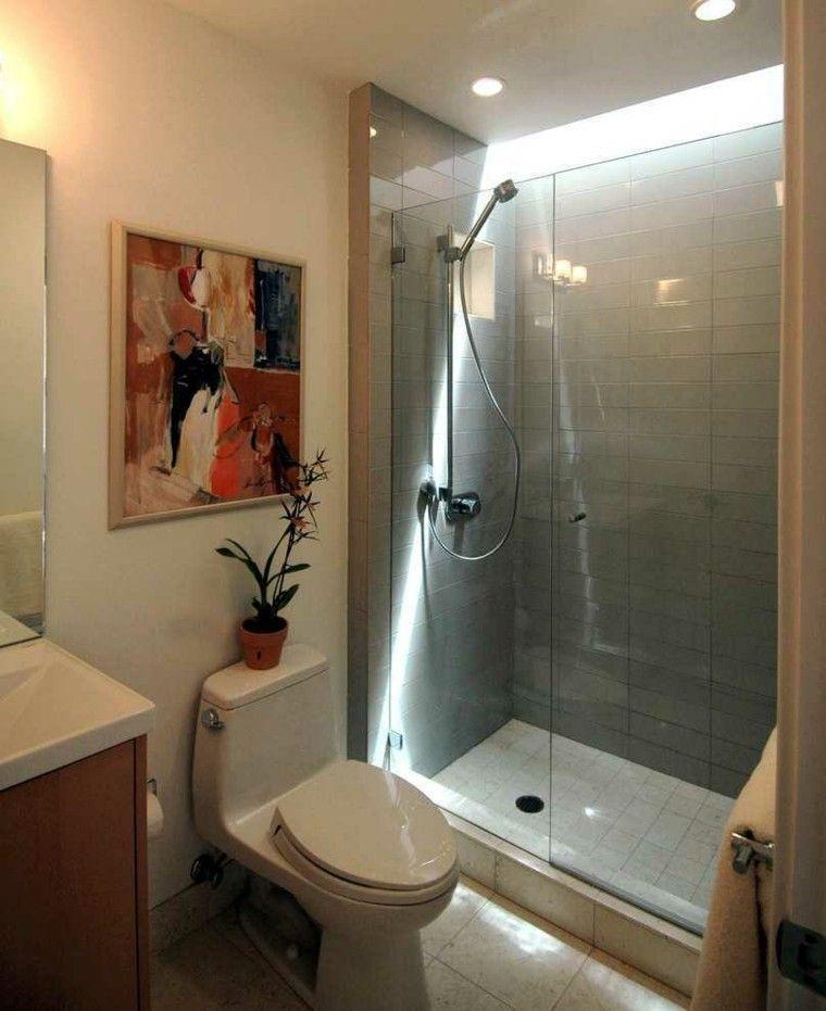 Ba o peque o con cuadro y maceta en la cabina de ducha - Banos pequenos con ducha ...