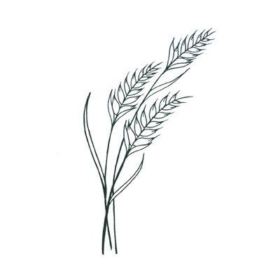 wheat spray tattoo idea second pro pinte