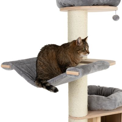 Pin on [ CAT LIFE ]