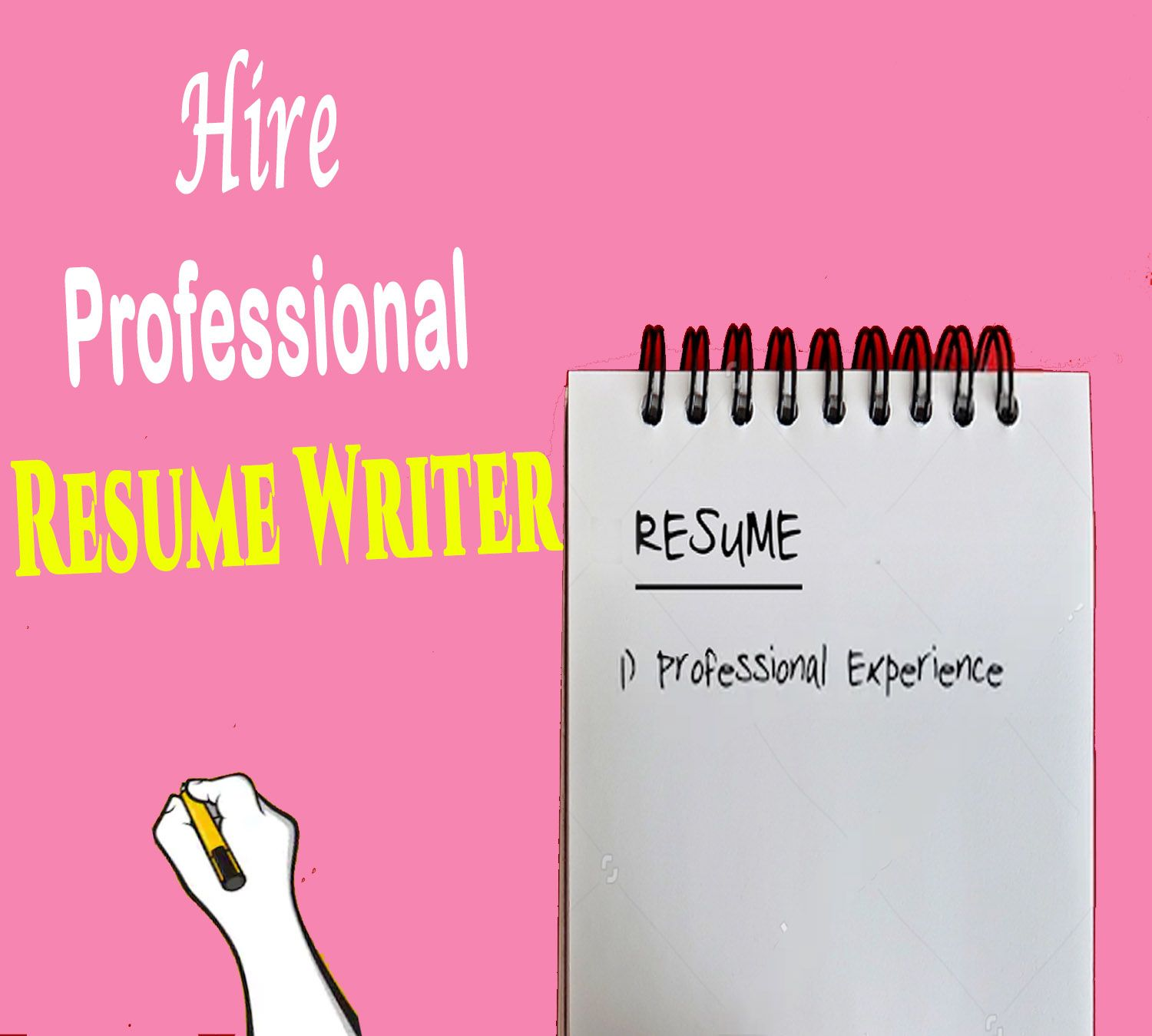 Hire Professional Resume Writer in 2020 Professional