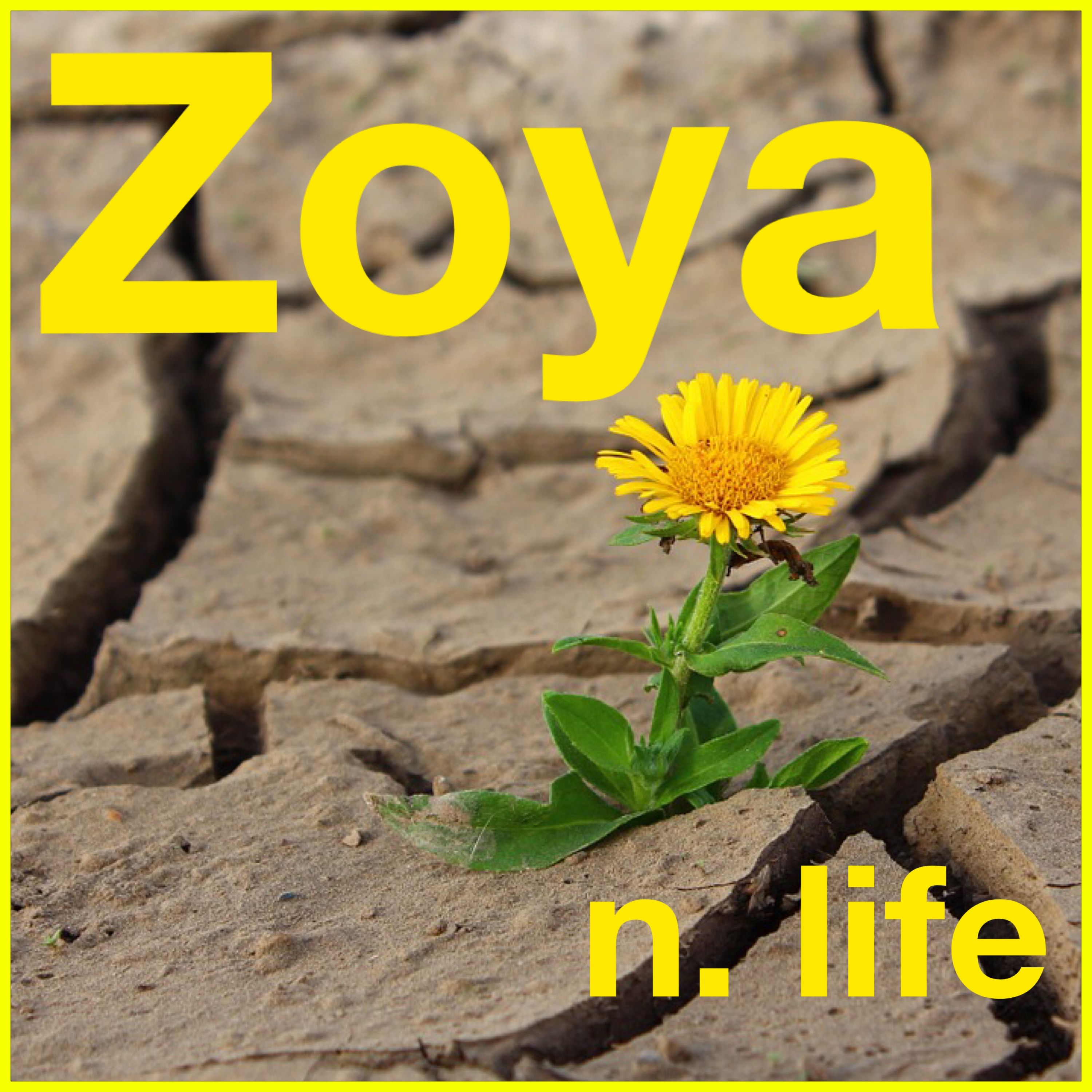 Zoya: the meaning of the name, origin, character and fate 75