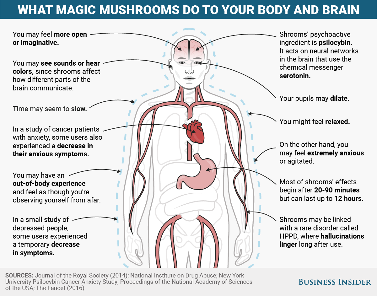 Here\'s what magic mushrooms do to your body and mind