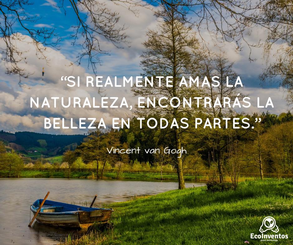 Si Realmente Amas La Naturaleza Encontrarás La Belleza En Todas Partes Van Gogh Vincent Van Gogh Cool Words