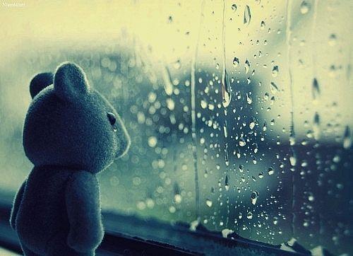 نتيجة بحث الصور عن sad teddy