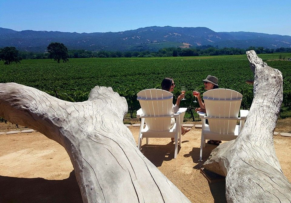 Lovely ladies enjoying the view and our award winning Viognier
