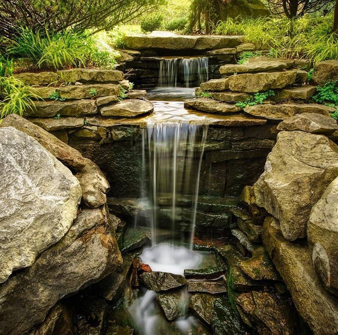 Dorable Inniswood Metro Gardens Illustration - Brown Nature Garden ...