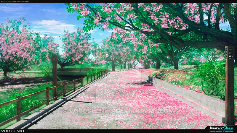 Spring Sakura Park by Voloshenko on DeviantArt Anime