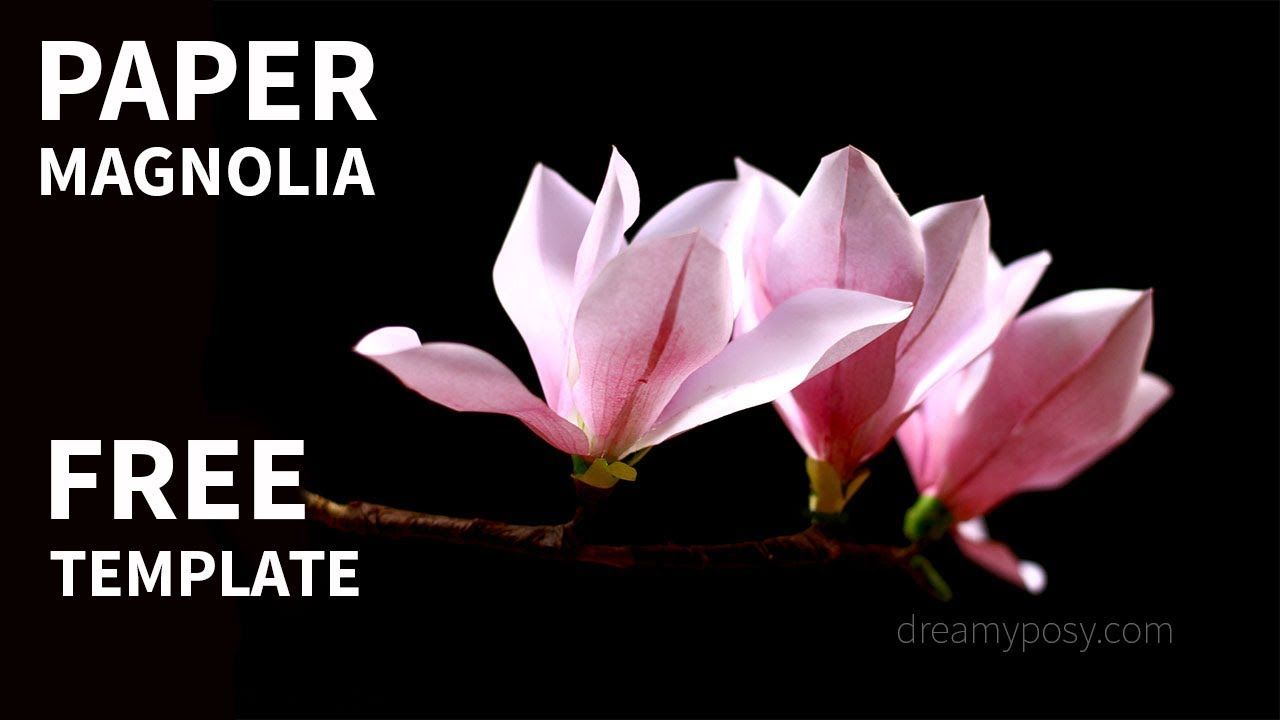 Free template how to make paper magnolia from printer paper flori free template how to make paper magnolia from printer paper mightylinksfo