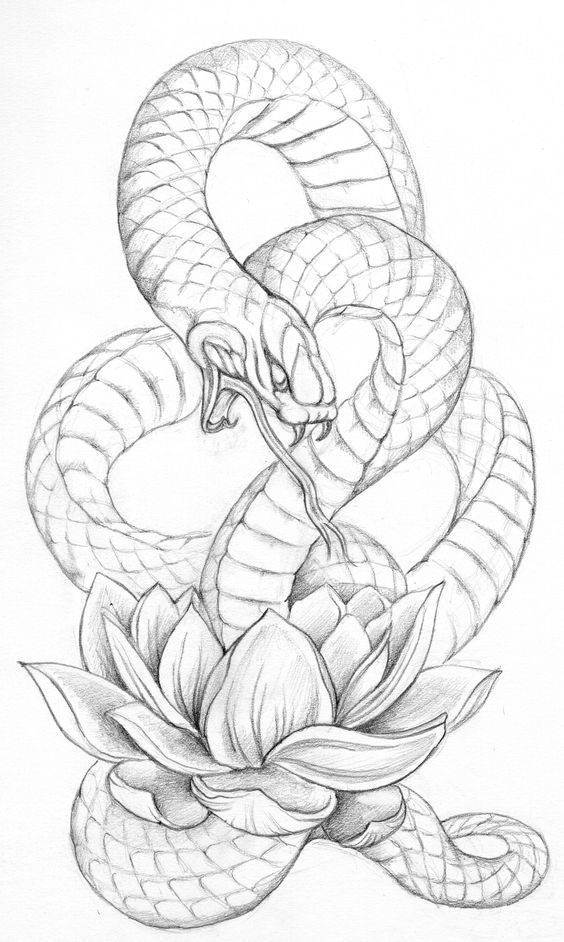 Dessin Tatouage Serpent Новости | tattoo designs | pinterest | idée tatouage, tatouages et