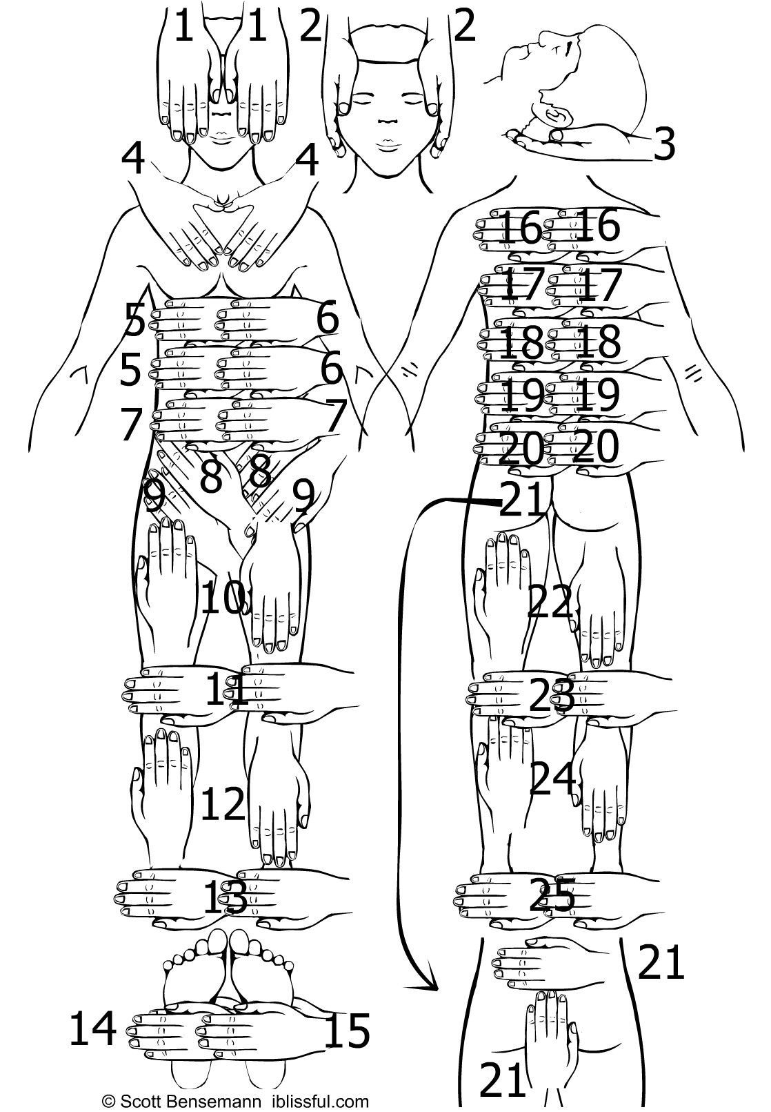 Image Detail For Reiki 1 Hand Position Guide Sheet