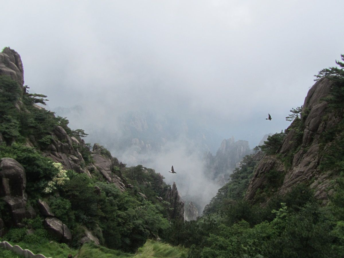 With birds, mist in the Chinese mountains