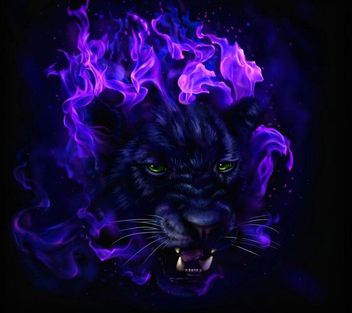 Panther Spirit Animal Art Panther Art Purple Animals