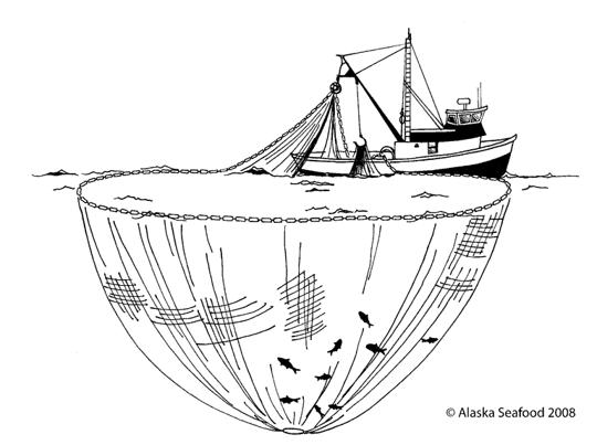 One Way To Catch Salmon In Alaska Onboard The Purse Seine Owyhee