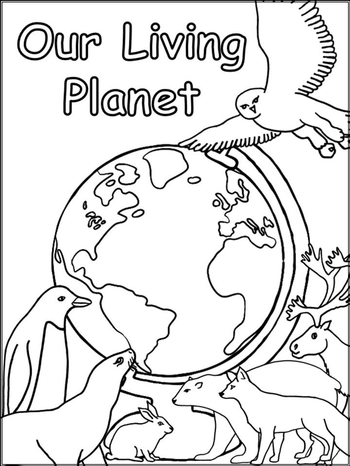 this title page is perfect for any science unit that involves living and nonliving things