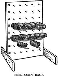 Saving the Seed Corn