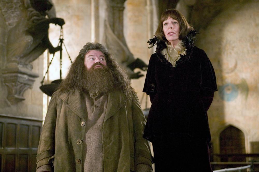 Harry Potter The Goblet Of Fire Harry Potter Wiki Harry Potter Facts Harry Potter Goblet