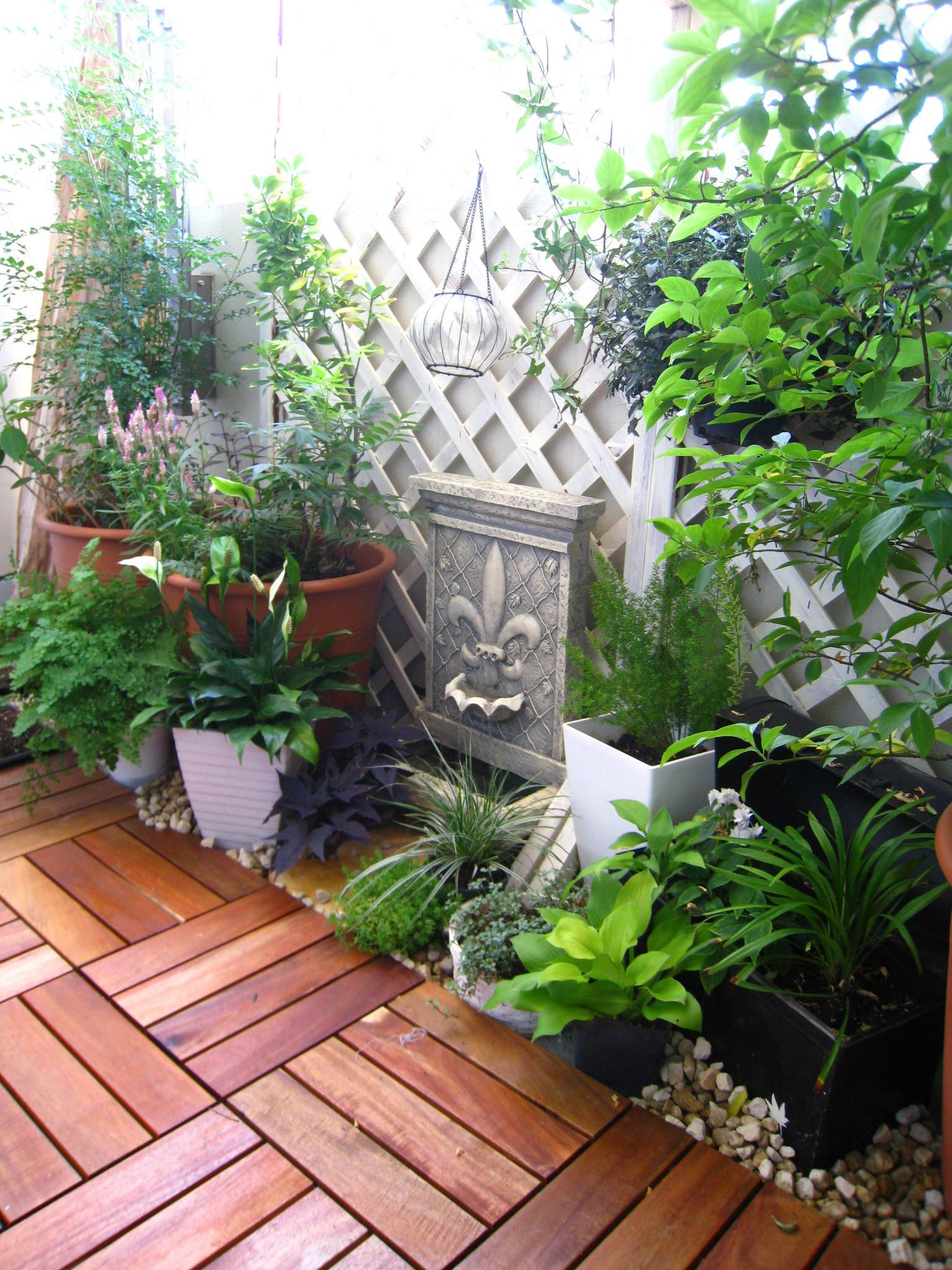 ベランダガーデニング 長崎の無名のガーデナーの庭ブログ 狭い
