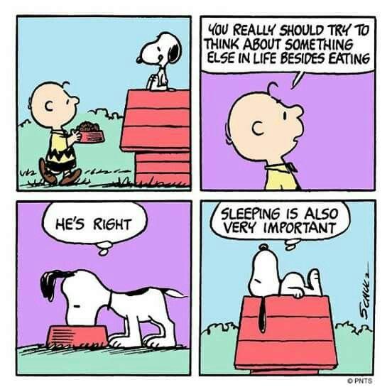 Pin de Alexandre Monclús en Charlie Brown, Mafalda i els seus amics ...