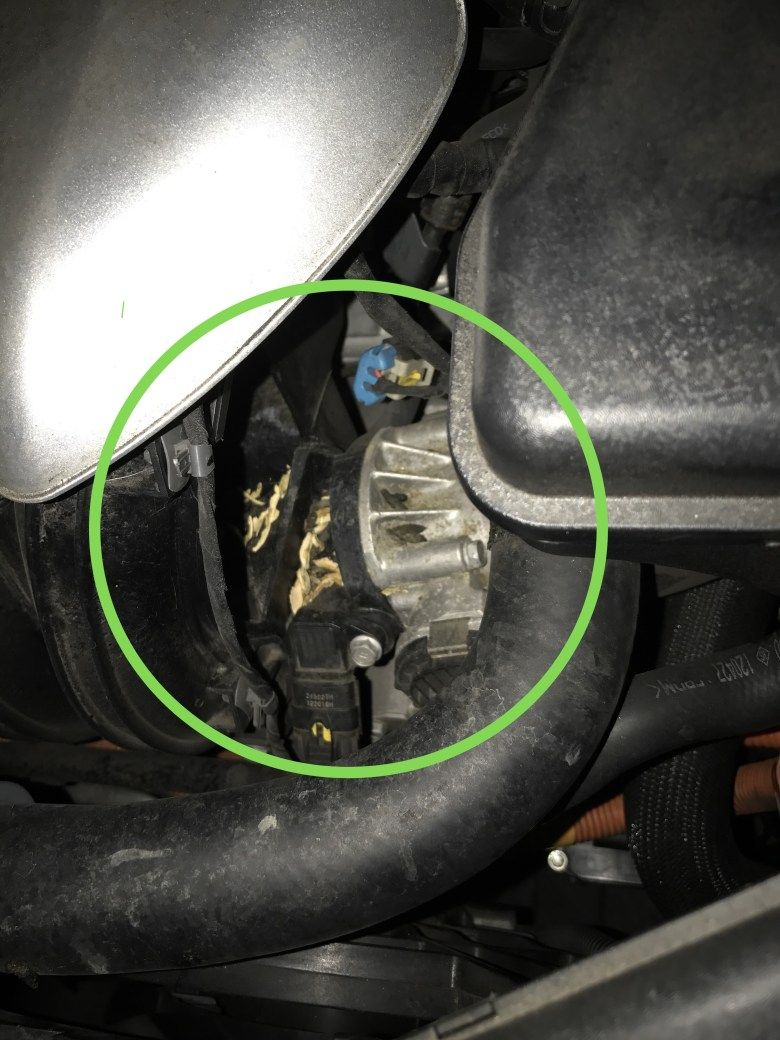 How To Prevent Rats Chewing Car Wires - WIRE Center •