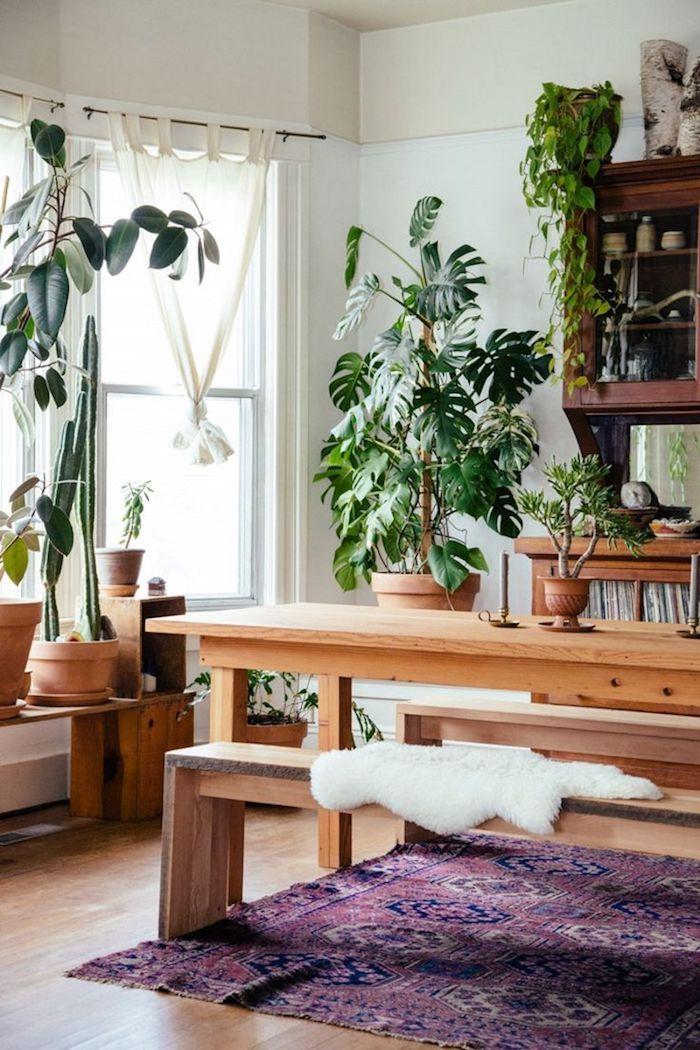 gemütliches Esszimmer mit viele Pflanzen die Schatten verlangen ...